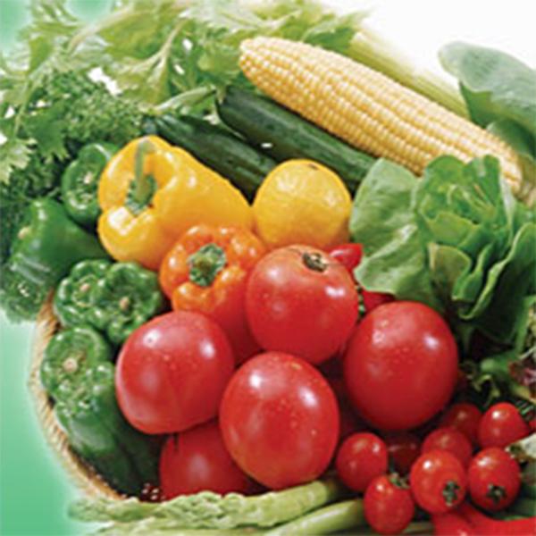 蔬菜配送/蔬菜配送公司/花生油/江门香肠/江门送水/巧克力生产